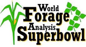 WorldForage150x275
